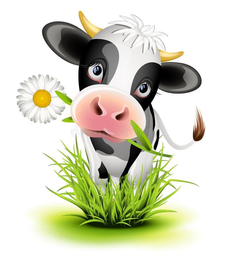 Mucca dell'Holstein in erba illustrazione vettoriale