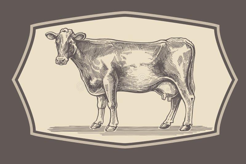 Mucca nello stile grafico illustrazione di stock