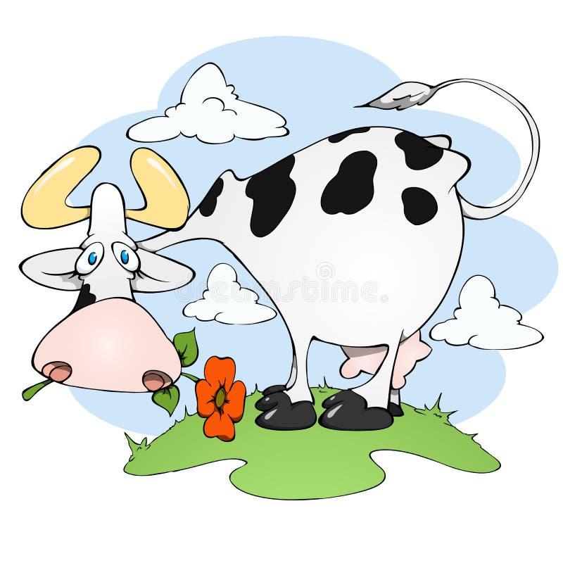 Mucca in un prato con il fiore immagine stock