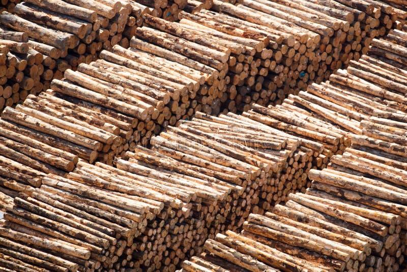 Mucchi del ceppo per l'esportazione fotografia stock libera da diritti