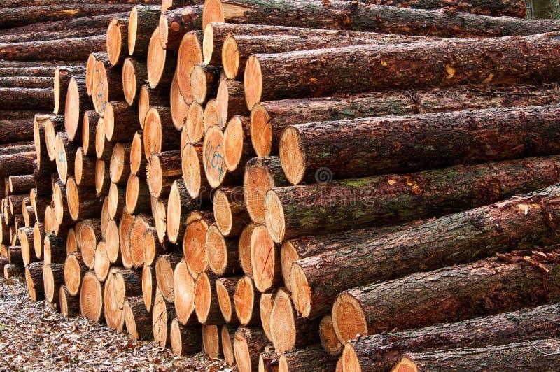 Mucchi di legno fotografie stock