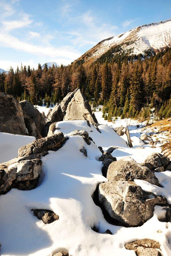 Download Mucchi E Montagne Della Roccia Fotografia Stock - Immagine di naughty, paesaggio: 7320470