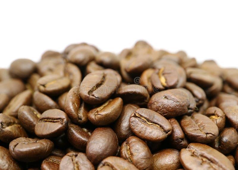 Mucchio alto chiuso dei chicchi di caffè arrostiti con spazio libero per progettazione e testo fotografia stock libera da diritti