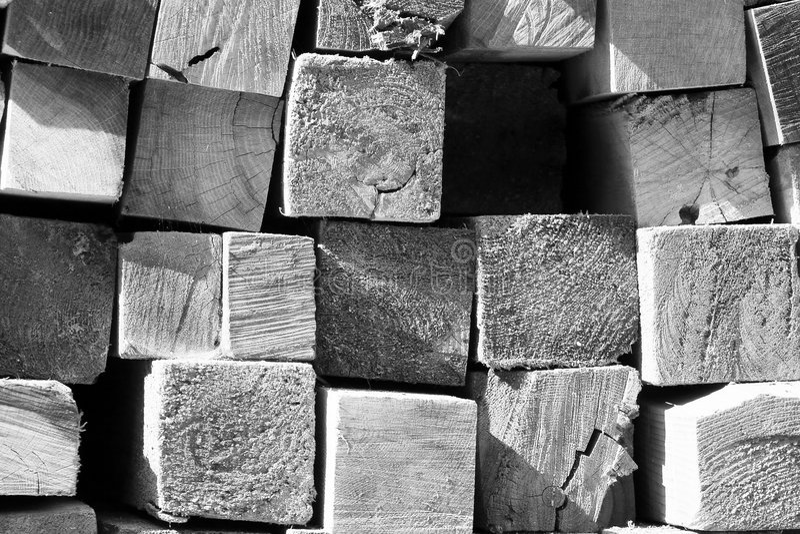 Mucchio B&W del legname fotografia stock libera da diritti