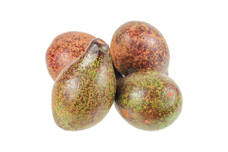 mucchio degli avocado isolati su bianco fotografie stock libere da diritti