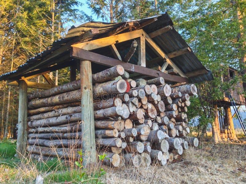 Mucchio dei ceppi di legno cutted del fuoco nell'ambito del riparo in Nuova Zelanda fotografie stock