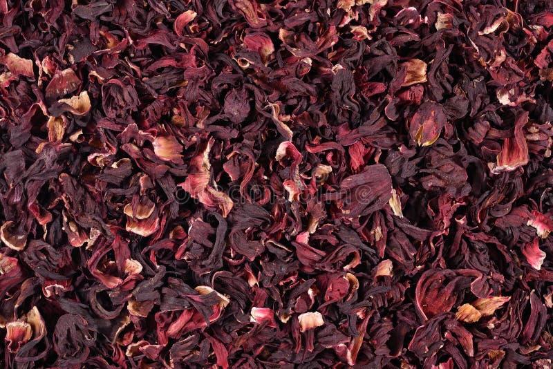Mucchio dei petali secchi degli ibischi fotografia stock libera da diritti
