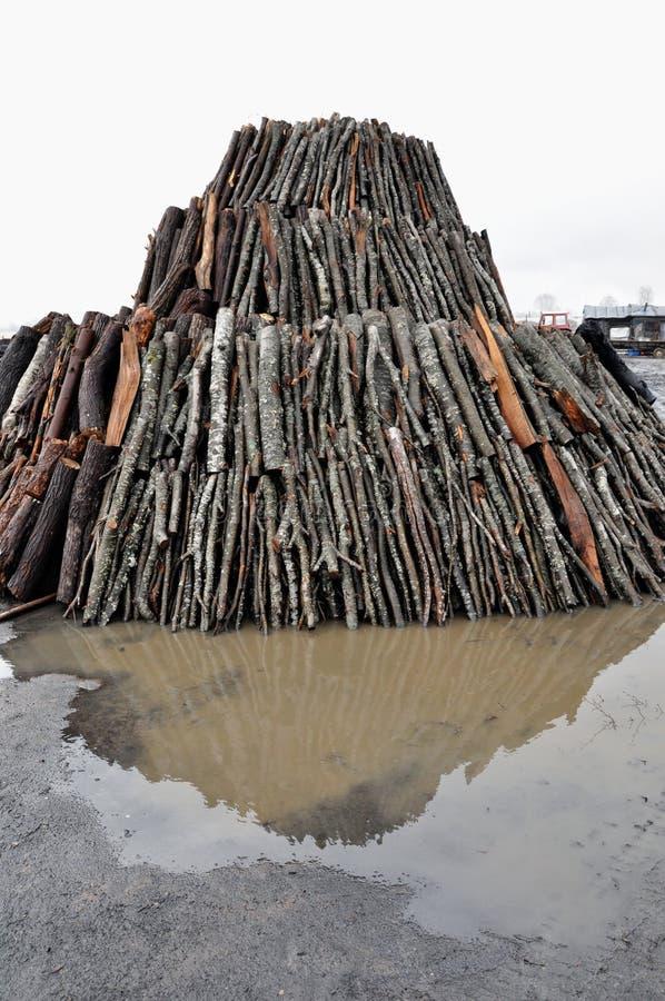 Mucchio del carbone di legna fotografie stock libere da diritti