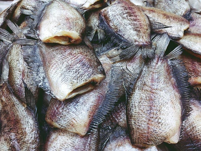 Mucchio del pesce secco di trichogaster pectoralis vicino su fotografia stock