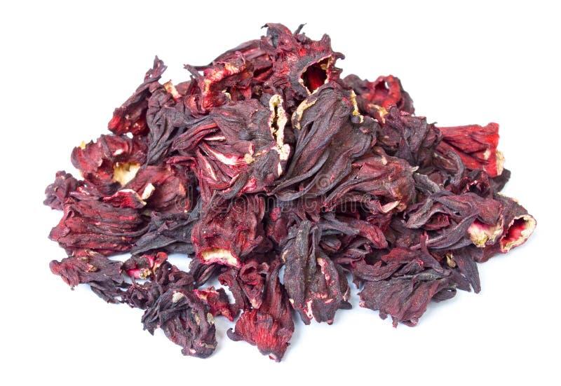 Mucchio del tè dell'ibisco isolato su wite fotografie stock libere da diritti