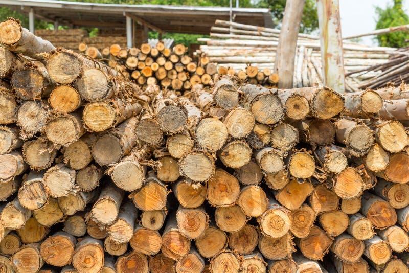 Mucchio del taglio dei tronchi di albero fotografie stock