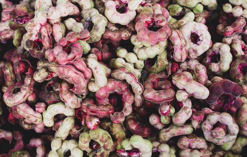 Mucchio del tamarindo di Manila maturo dei fagioli di pithecellobium dulce nel mercato tailandese immagine stock