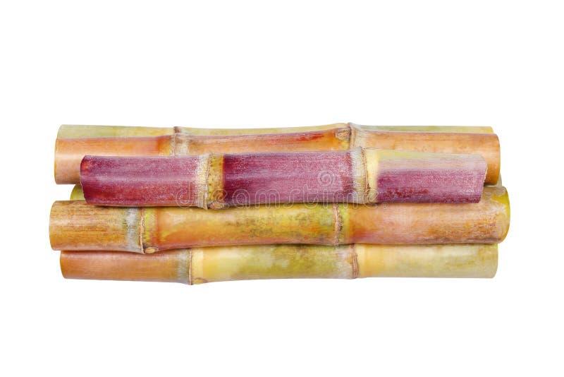 Mucchio della canna da zucchero isolato su fondo bianco, mucchio di Sugar Cane, pezzo fresco, fine della canna da zucchero della  fotografia stock