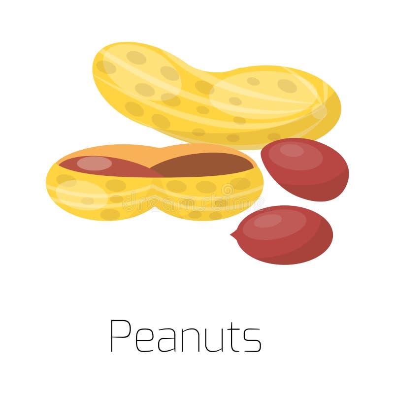 Mucchio delle arachidi matte dell'illustrazione di vettore illustrazione di stock