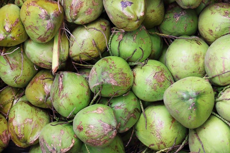 mucchio delle noci di cocco verdi per il modello ed il fondo fotografie stock libere da diritti