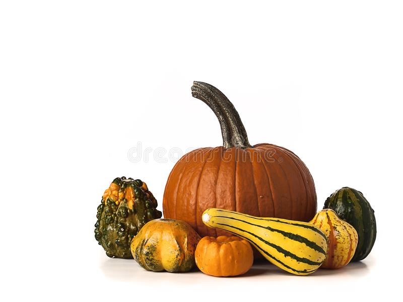Mucchio delle zucche arancio e verdi isolate su fondo bianco immagine stock