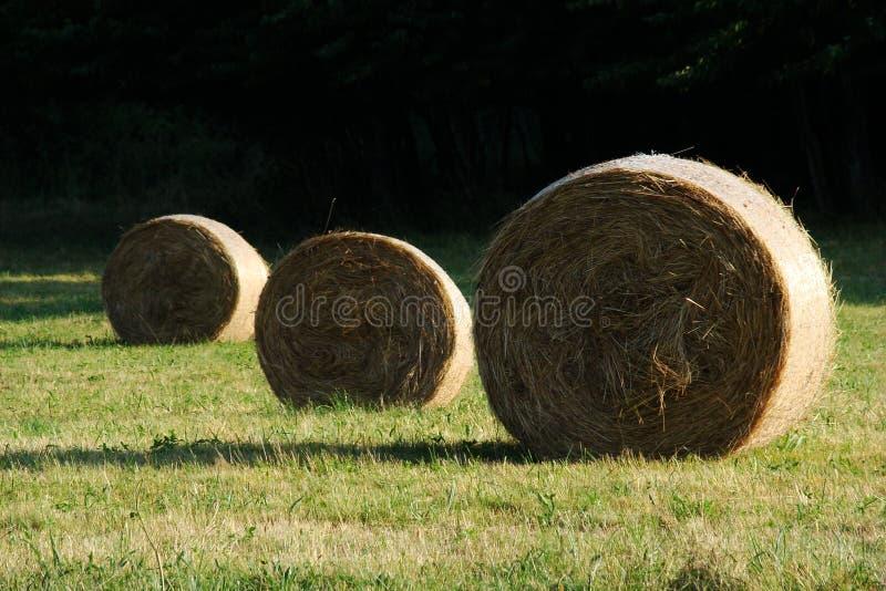 Mucchio di fieno in Pyrenees fotografie stock