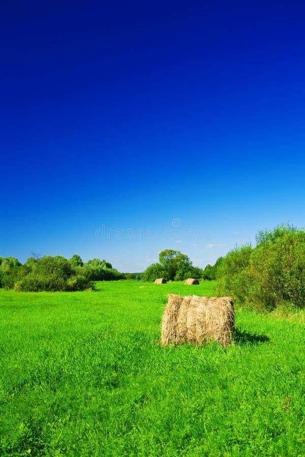 Mucchio di fieno su un campo verde immagini stock libere da diritti