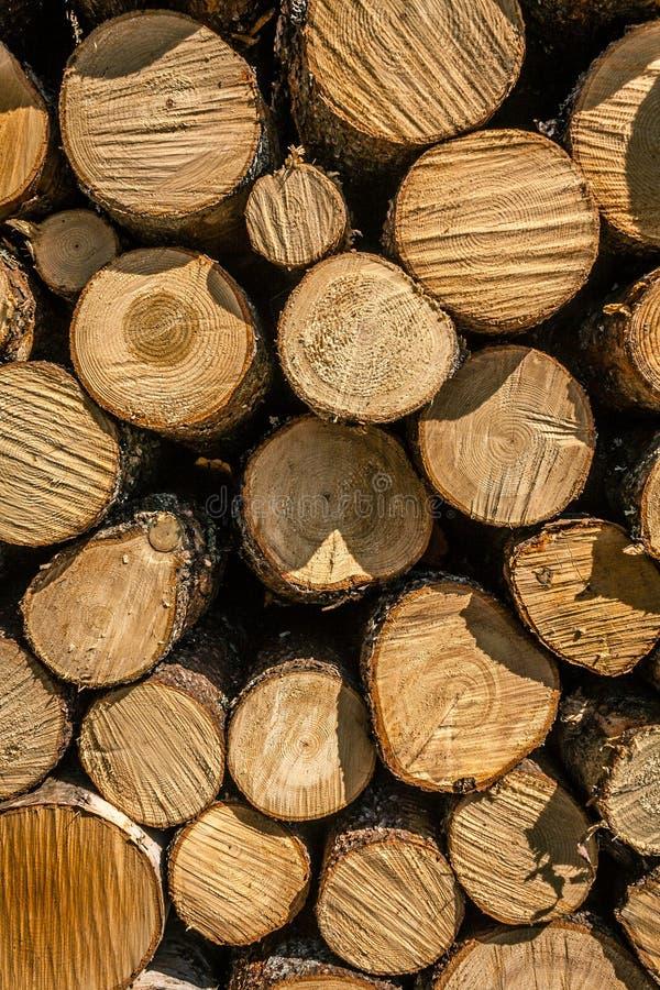 Mucchio di legno 2 fotografia stock