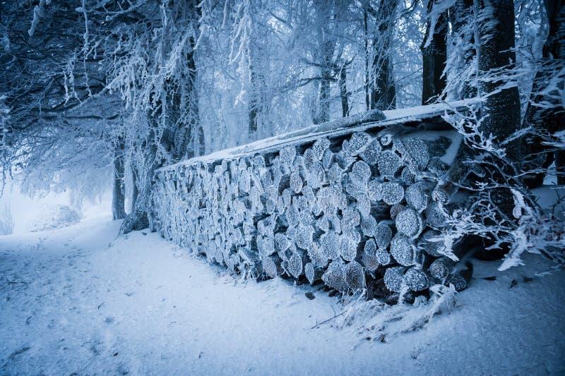 Mucchio di legno coperto di neve e di brina fotografia stock libera da diritti