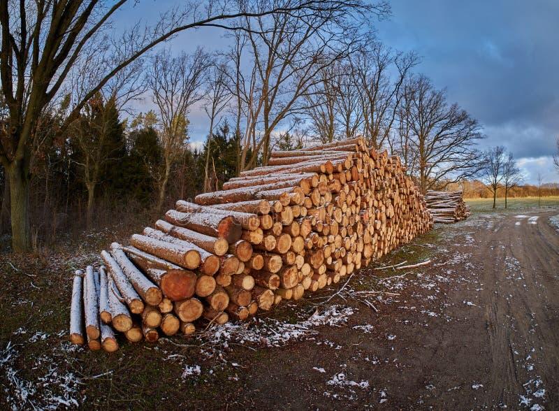 Mucchio di legno coperto in neve fotografie stock libere da diritti