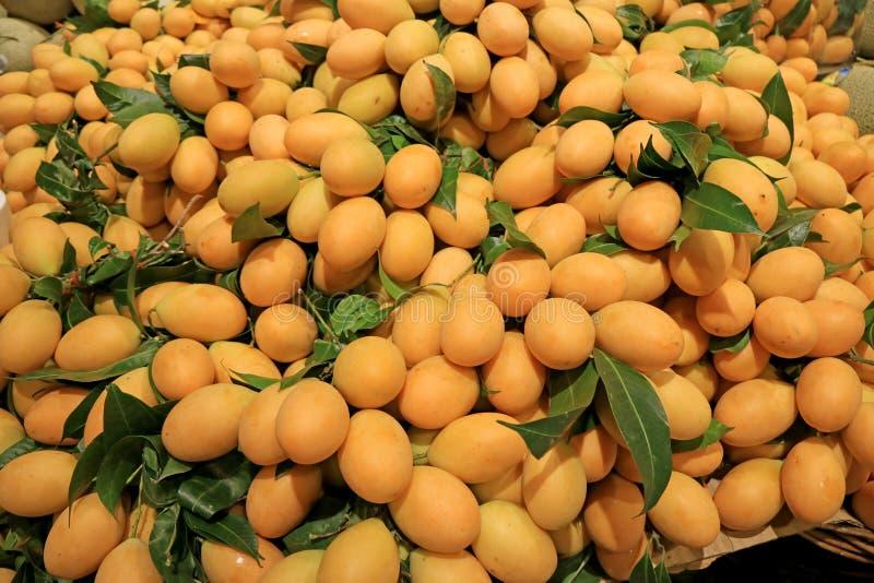 Mucchio di Marian Plum Fruits maturo fresco o di Mayongchid nella lingua tailandese che vende nel mercato fotografia stock libera da diritti