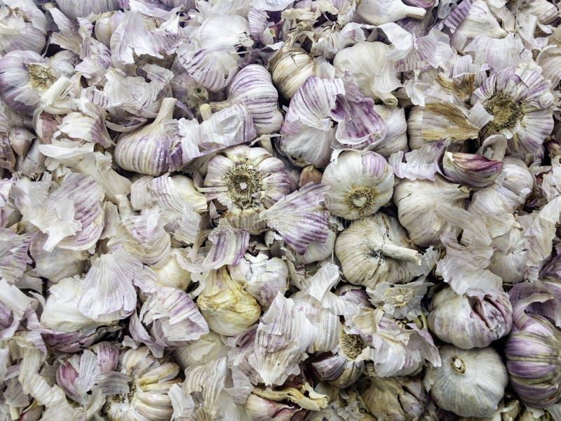 Mucchio enorme dell'aglio di alimento sano perfetto fotografie stock