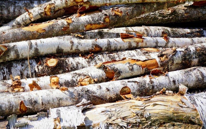Mucchio impilato di legno fotografie stock libere da diritti