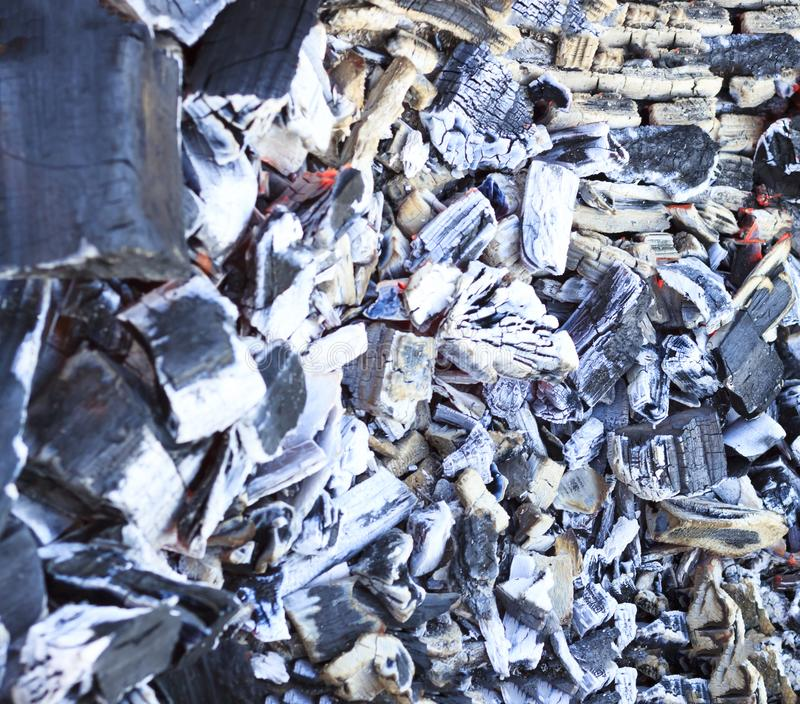 Mucha haber carbonizado, carbón de leña, ceniza El árbol apenas quemado abajo imágenes de archivo libres de regalías
