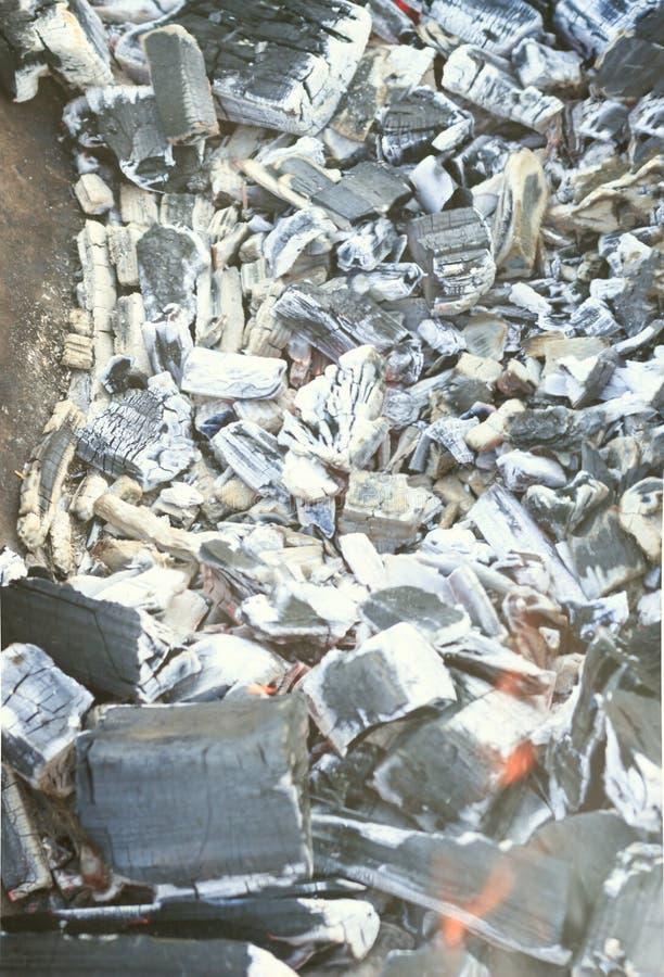 Mucha haber carbonizado, carbón de leña, ceniza El árbol apenas quemado abajo imagen de archivo libre de regalías