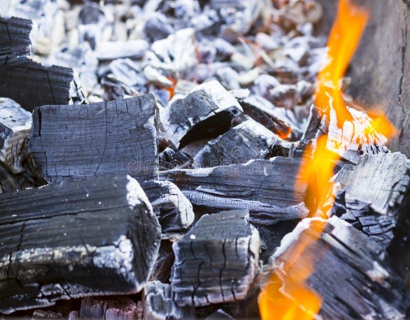 Mucha haber carbonizado, carbón de leña, ceniza El árbol apenas quemado abajo foto de archivo libre de regalías