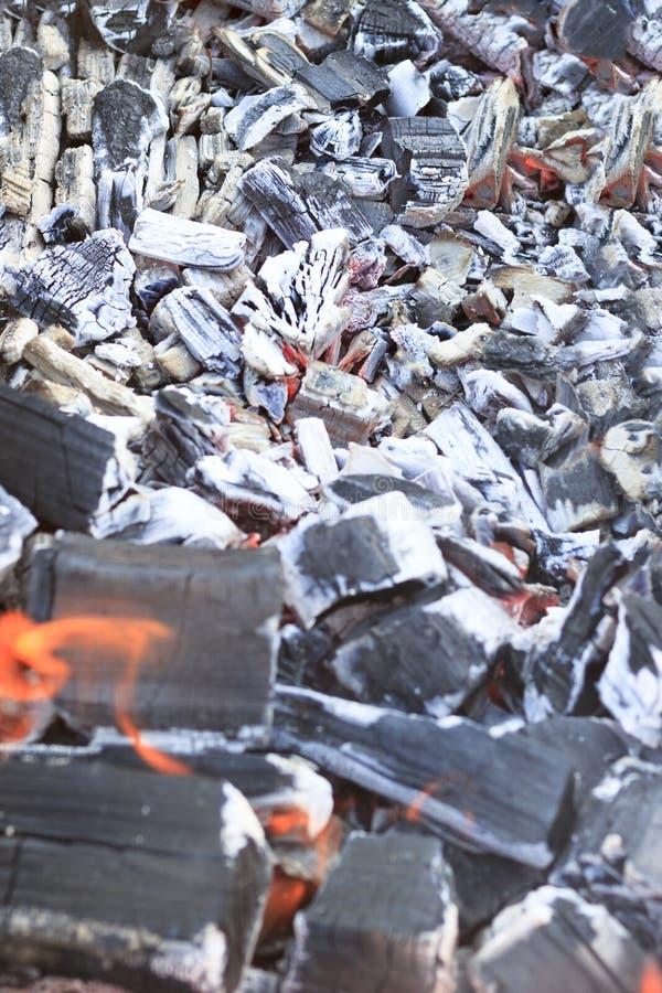 Mucha haber carbonizado, carbón de leña, ceniza El árbol apenas quemado abajo imagenes de archivo