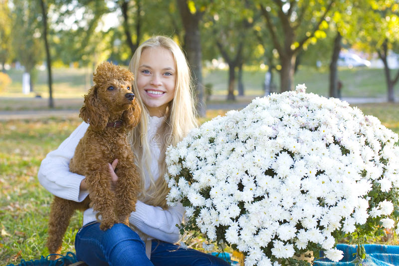 Muchacha adolescente y su caniche rojo foto de archivo