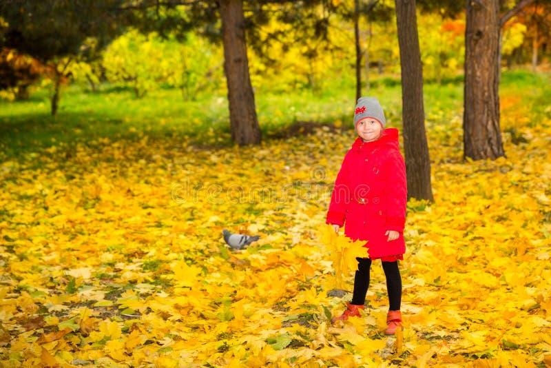 Muchacha adorable feliz del niño con las hojas en parque del otoño Caída La oficina de la C imágenes de archivo libres de regalías
