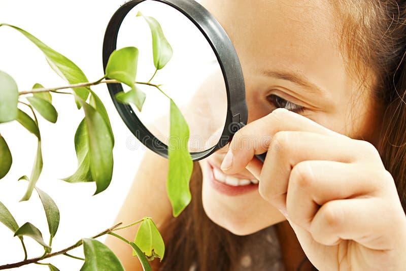 Muchacha adorable que mira una planta a través de una lupa imagen de archivo