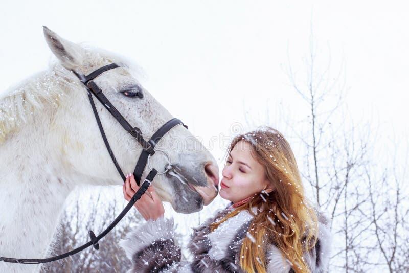Muchacha agradable y caballo blanco al aire libre en un invierno imágenes de archivo libres de regalías