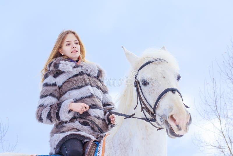 Muchacha agradable y caballo blanco al aire libre en un invierno imagen de archivo