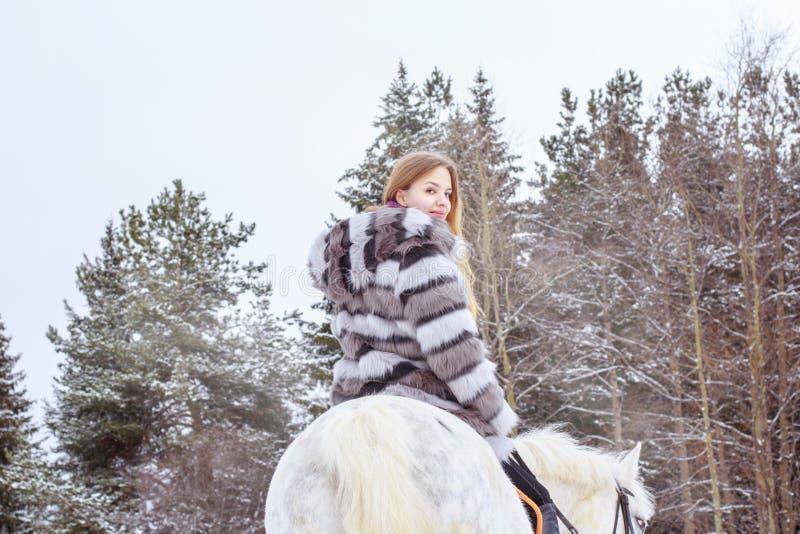 Muchacha agradable y caballo blanco al aire libre en un invierno imagen de archivo libre de regalías