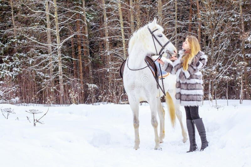 Muchacha agradable y caballo blanco al aire libre en un invierno fotografía de archivo libre de regalías