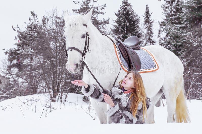 Muchacha agradable y caballo blanco al aire libre en un invierno imagenes de archivo