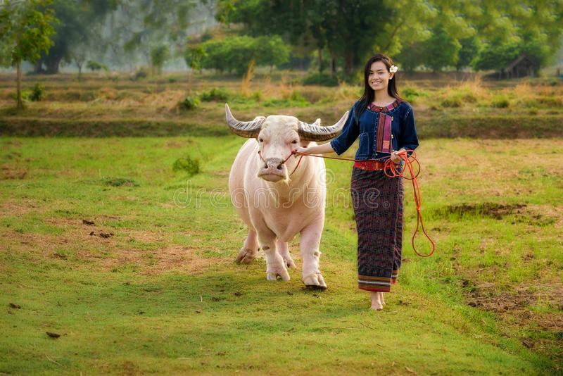 Muchacha asiática con el búfalo imagen de archivo libre de regalías