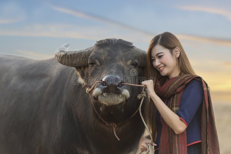Muchacha asiática en el campo, jugando con su búfalo foto de archivo