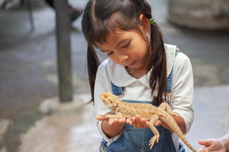 Muchacha asiática linda del niño que se sostiene y que juega con el camaleón fotos de archivo