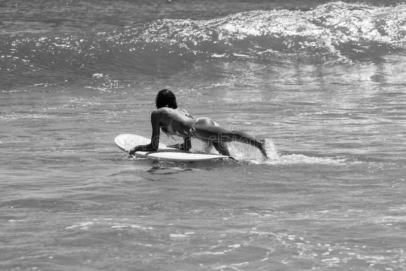 Muchacha atractiva de la persona que practica surf imágenes de archivo libres de regalías