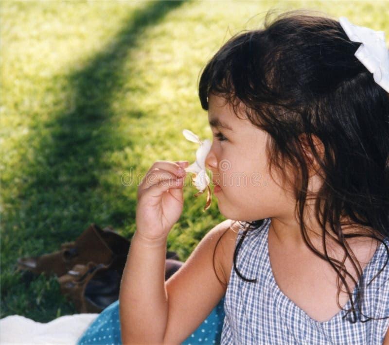 Muchacha bonita que huele una flor - cosechada fotos de archivo libres de regalías