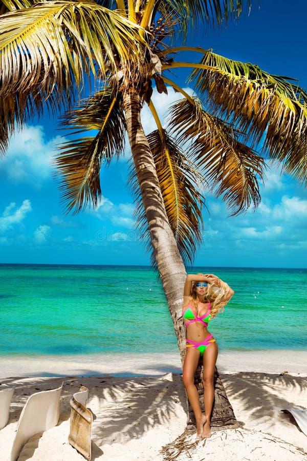 Muchacha bronceada hermosa en soportes de moda del bikini al lado de una palmera en la playa de una isla tropical Vacaciones de v foto de archivo libre de regalías