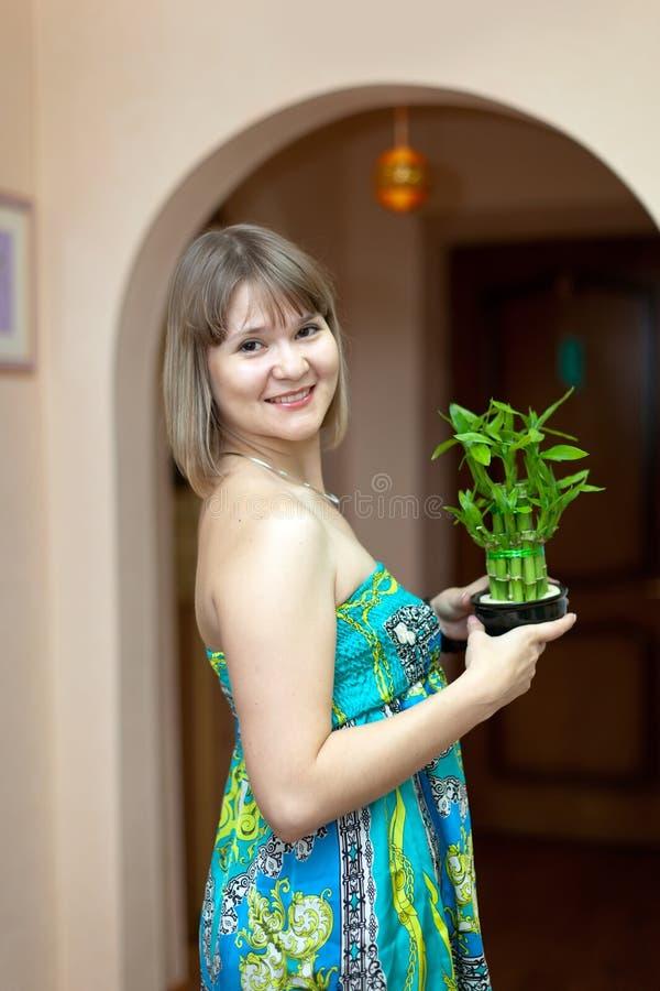Muchacha con el bambú afortunado fotografía de archivo