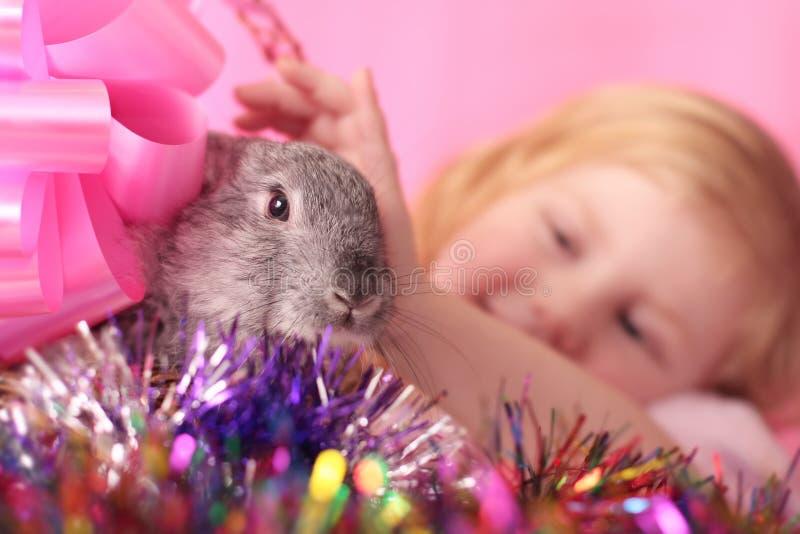 Muchacha Con El Conejo Foto de archivo