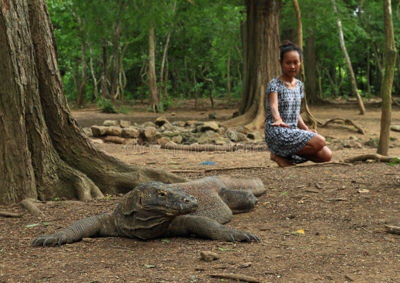 Muchacha con el dragón de Komodo imagenes de archivo