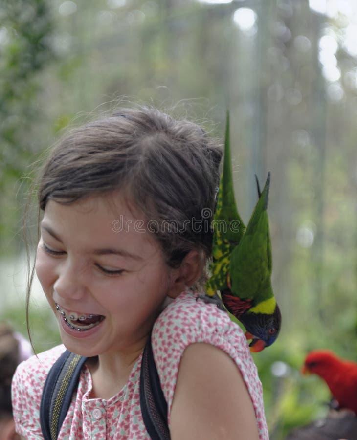Muchacha con el loro en su hombro imagen de archivo libre de regalías